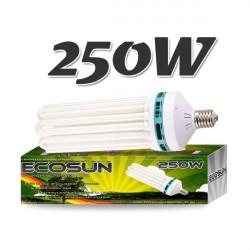 Ampoule CFL 250 Watt Floraison