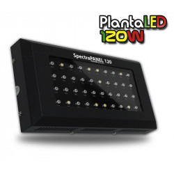 SpectraPANEL 120 Light