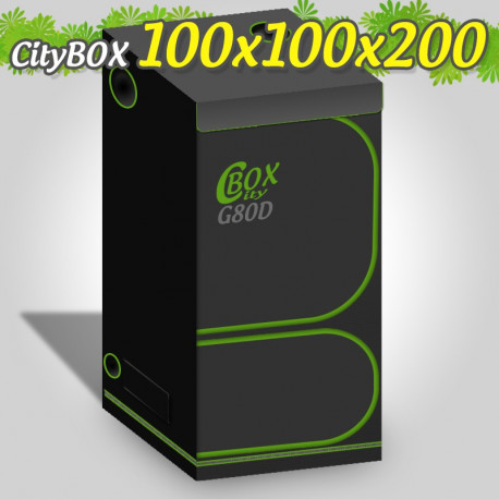CITYBOX TWIN 100 X 100 X 200