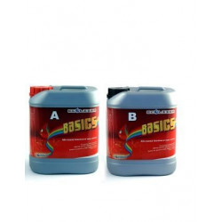 Ecolizer Basic A+B 10L