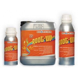 Ecolizer Root Up 300 ml