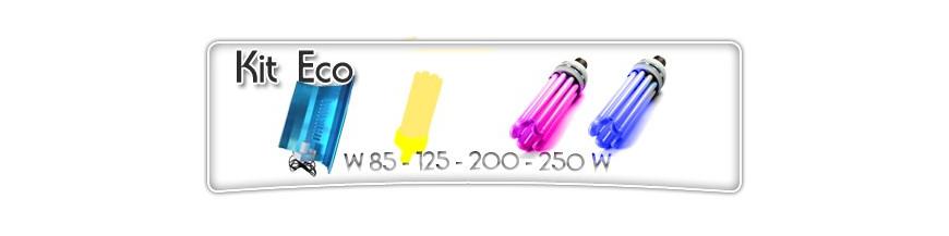 Economie d'energie-kit éco-85W-125W-200W-250W-floraison-croissance