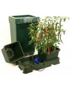 Hydroponie - Auto Pot Systèmes - Easy 2 Grow - Aqua Valve