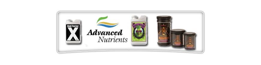 Engrais Advanced Niceutrients-Big bud-Bud factor X-Tarantula
